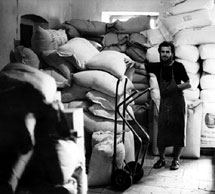 Joseph Wilhelm in the store room 1978